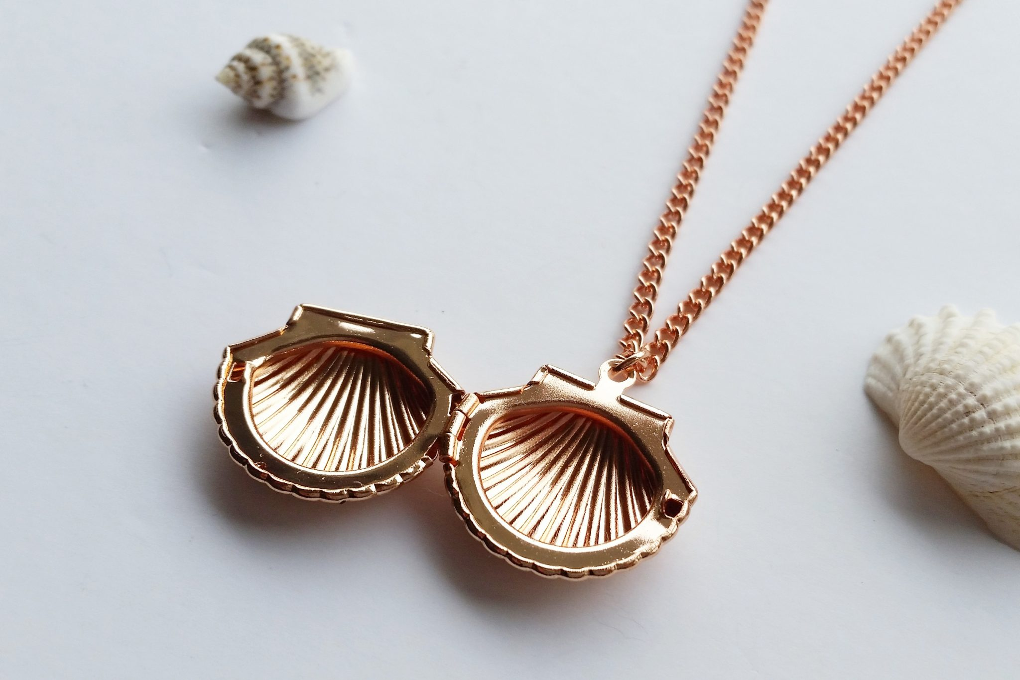 Lovely Rose Gold Sea Shell Locket Necklace | Seaside Jewellery UY93