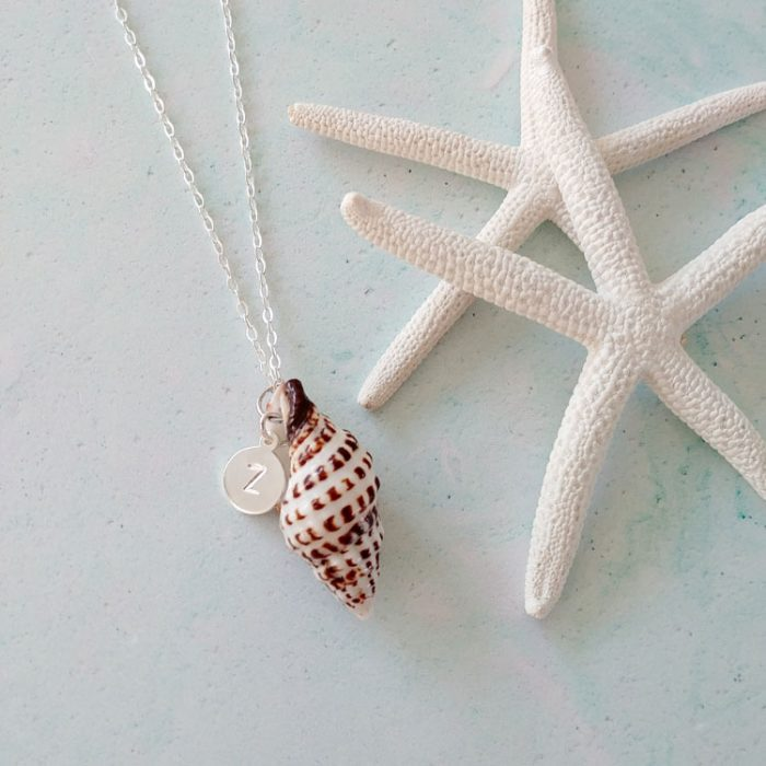 my-seashell-necklace