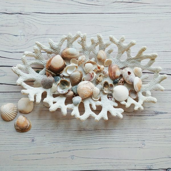 white resin coral reef decorative bowl