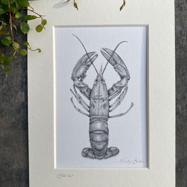 lobster fine art pencil drawing print