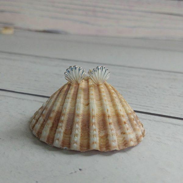 seashell sterling silver stud earrings